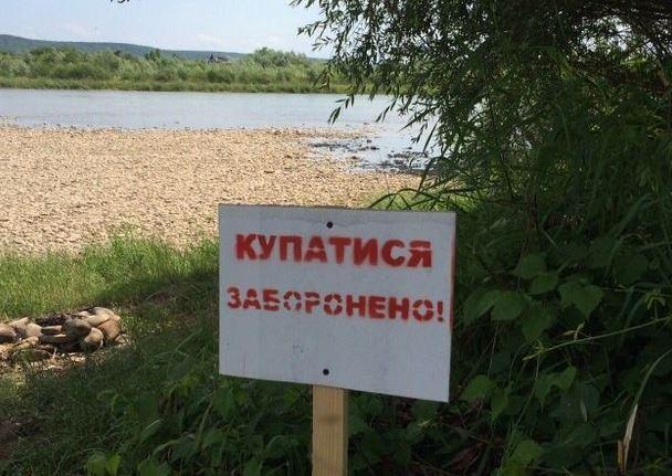 Популярные пляжи Киева непригодны для купания