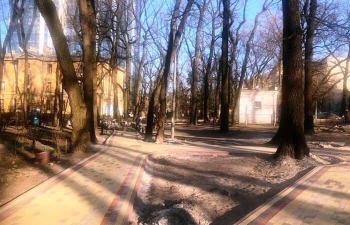В Соломенском районе полностью обновили сквер между уникальных деревьев
