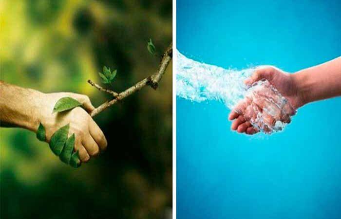«Здоровье природы – здоровье человека»: а вы беспокоитесь об окружающей среде?
